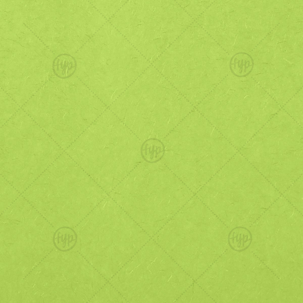 Lime Tissue Paper | Our custom Lime 10 sheets Tissue Paper will add that special attention to detail that cannot be overlooked.